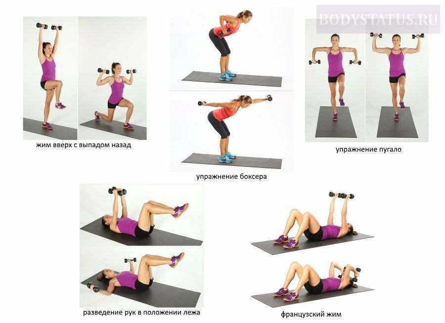 Самые действенные упражнения с гантелями для женщин для похудения