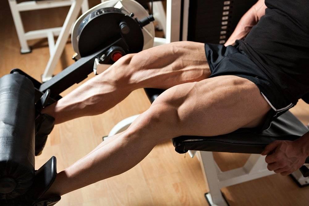 Эффективные упражнения для тренировки мышц ног на массу в тренажерном зале: программа и советы