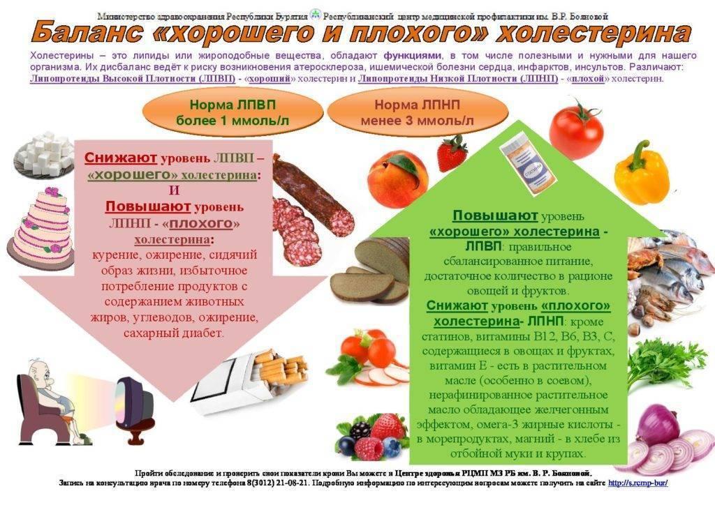 Гипохолестериновая диета: продукты и меню на неделю   food and health