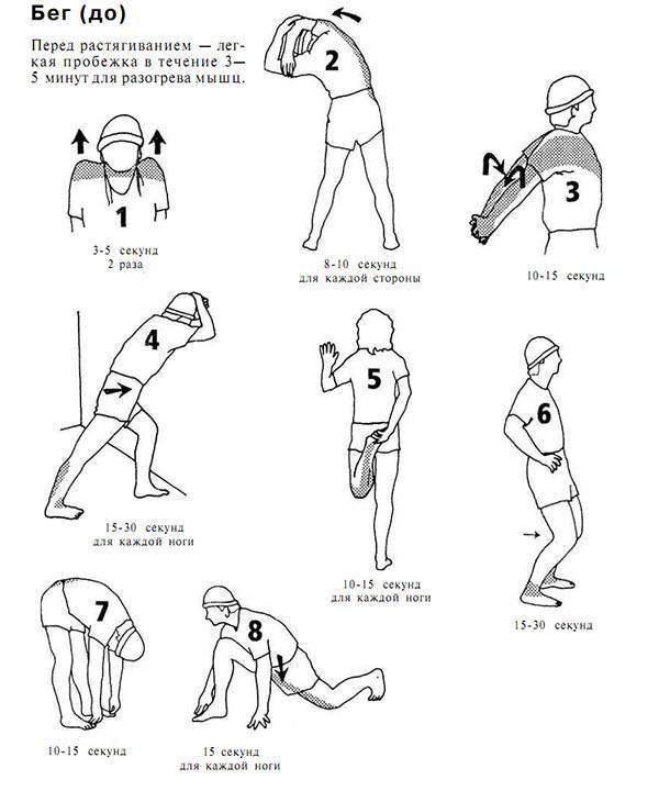 Комплексы упражнений для разминки перед тренировкой